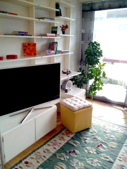 Cosy place, downtown @ 4 tram stops - Bâle - Appartement