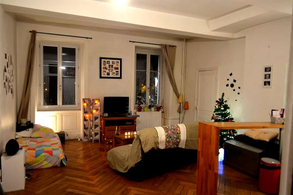 Studio avec cachet en Hyper Centre - Bourg-en-Bresse - Apartment
