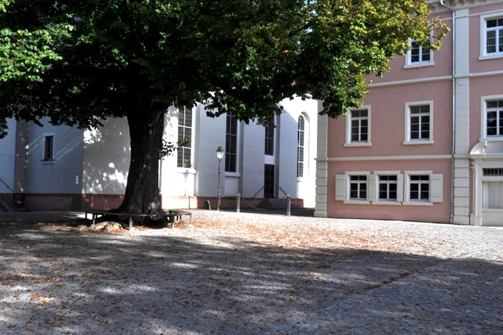 Room in a quite area in Freiburg - Freiburg - Bed & Breakfast