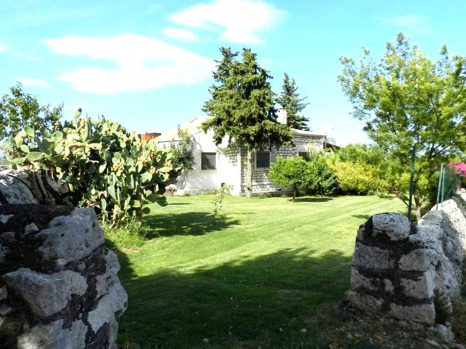 Amazing Country House  - Melilli - House