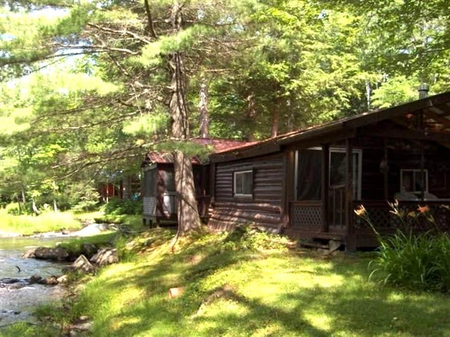 Hideaway Cabin on Pristine Trout Stream - アンドーバー - キャビン
