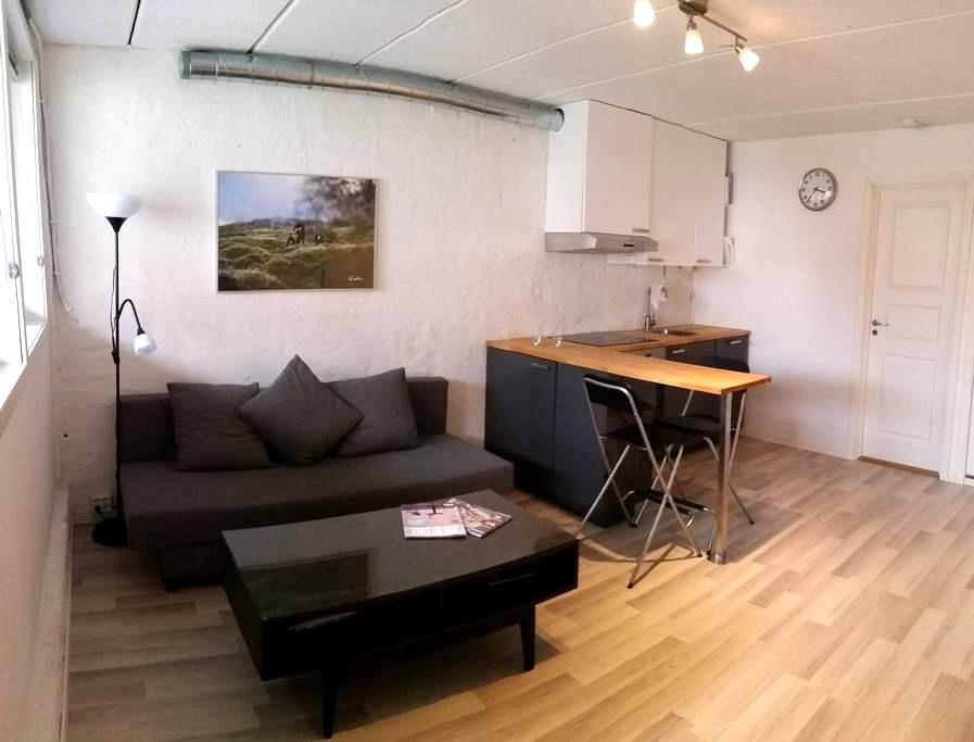 Modern apartement close to BI and the Aker river - Oslo - Appartement