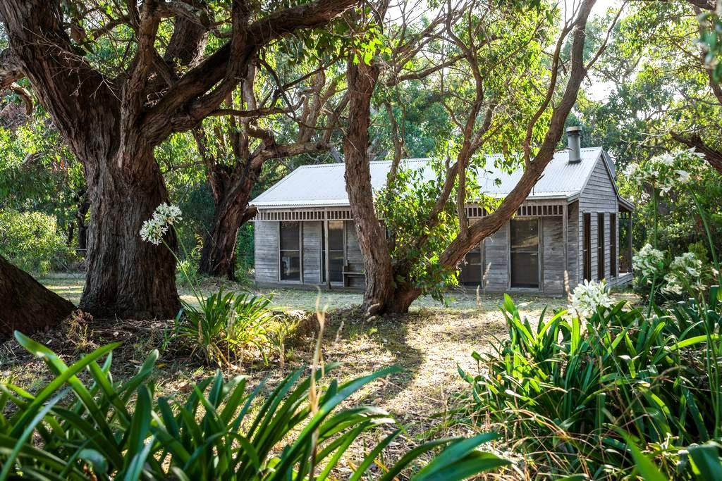 Cosy Cottage in a Bush Setting - Port Campbell - Huis