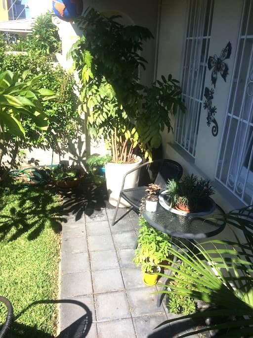 Private room in Victorian terrace house - Randwick - Rumah
