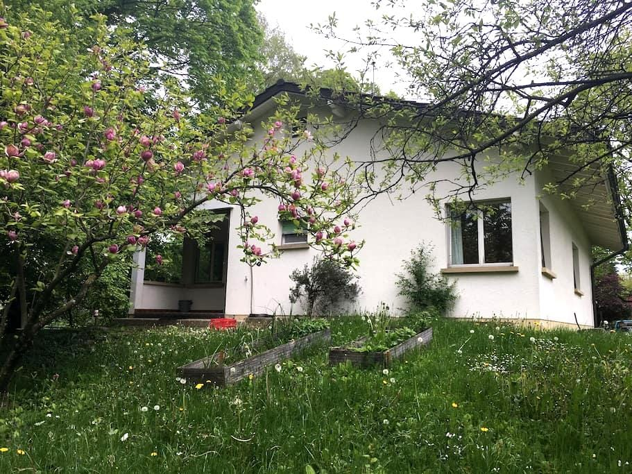 Villa with garden, Châtelaine. - Châtelaine - House