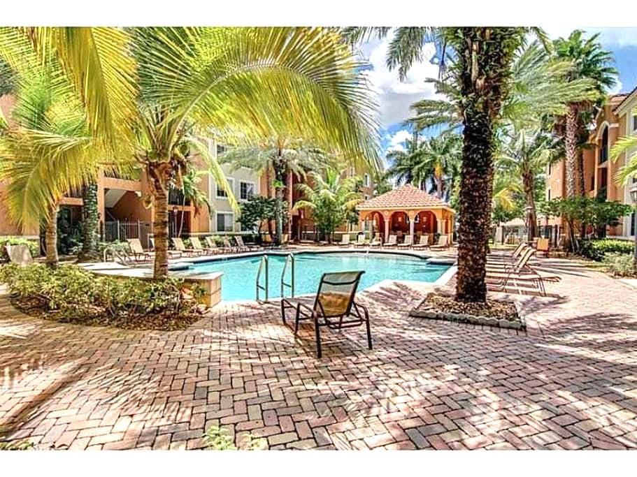 Down town  Miami/ Coral gables - Miami