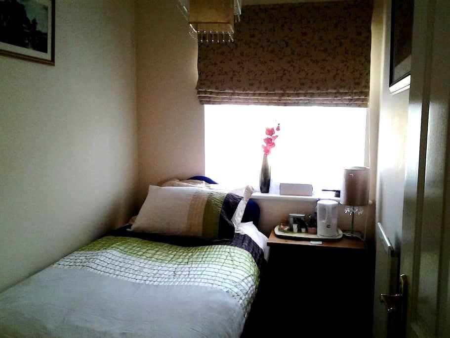 single bedroom - Bristol - Dom