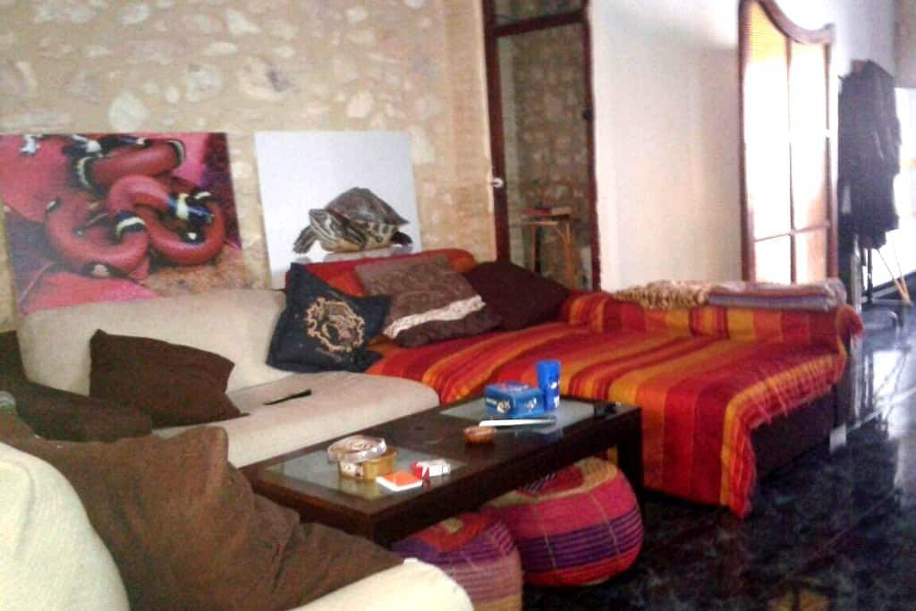 Habitacion Burjassot Valencia de 4-5 personas - Burjassot - Bed & Breakfast