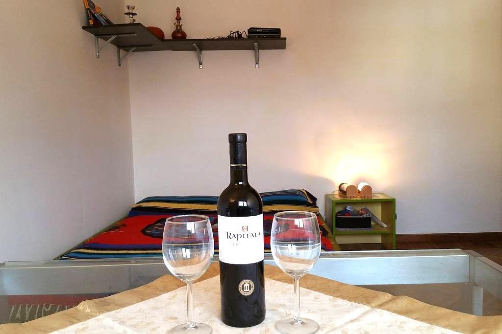Stanza comoda, accogliente e ben collegata - Rome - Leilighet