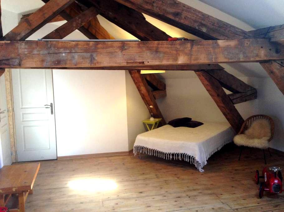 studio/terrasse sous les toits - Romans-sur-Isère