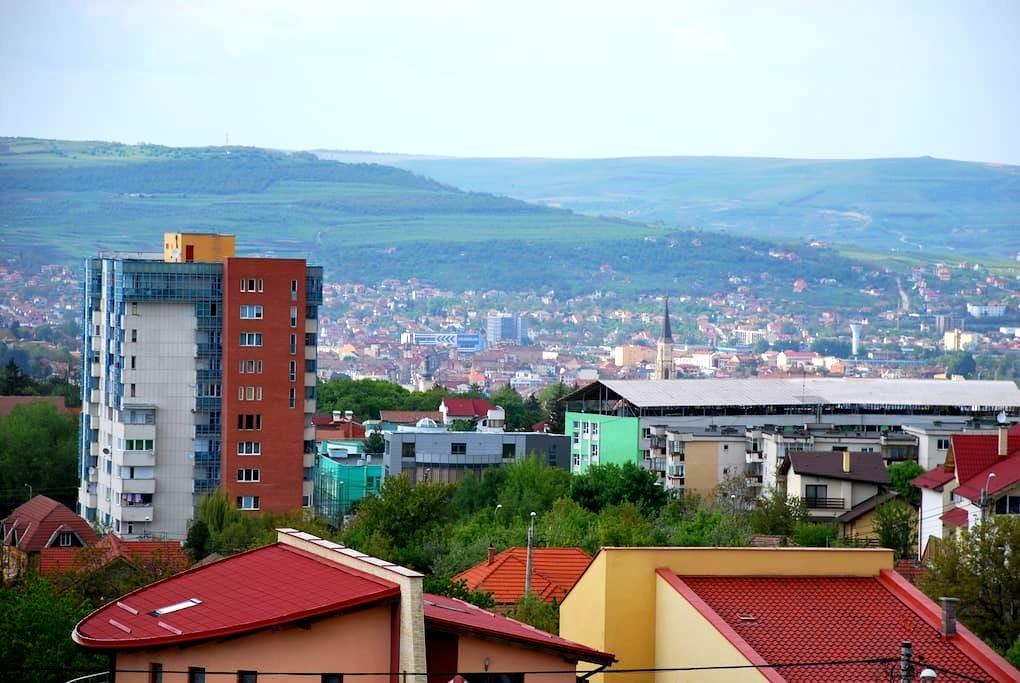 Cozy 1 bedroom appartment. - Cluj-Napoca - Byt