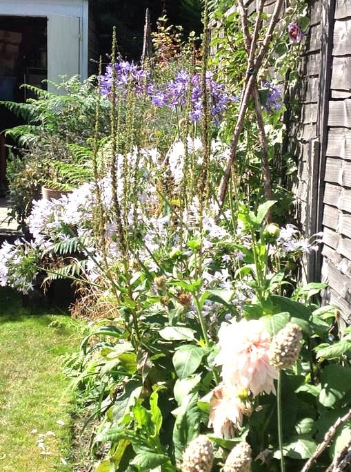 Victorian Cottage with garden - West Molesey - Dom