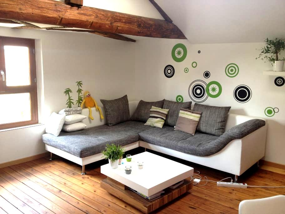 Charming Apartment in City Center - Châlons-en-Champagne - อพาร์ทเมนท์
