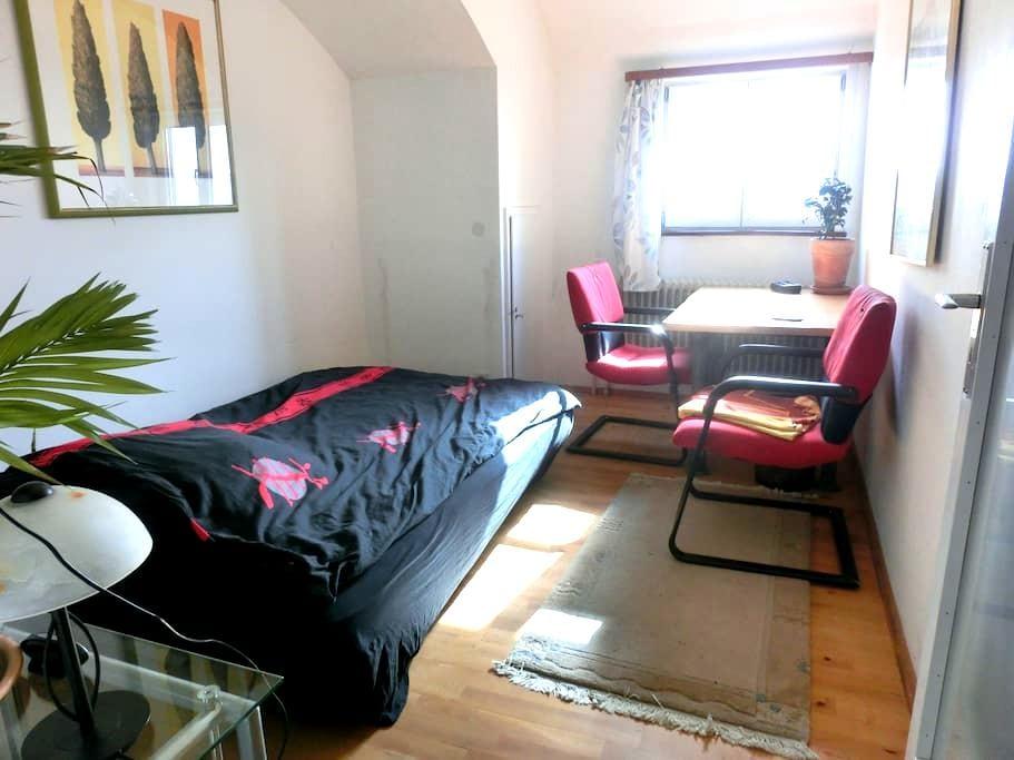 Nice, bright and quiet room - Tübingen - Huis