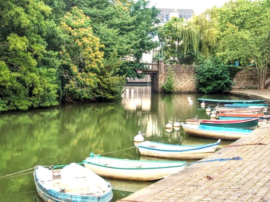 Jolie chambre (accès indépendant) - Nantes - Apartment