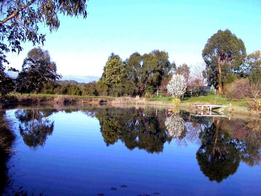 Swanpool Creek Bed & Breakfast - Swanpool - Bed & Breakfast