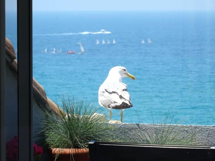 Penthouse over the sea  2 bedrooms - Marseille - Lejlighed