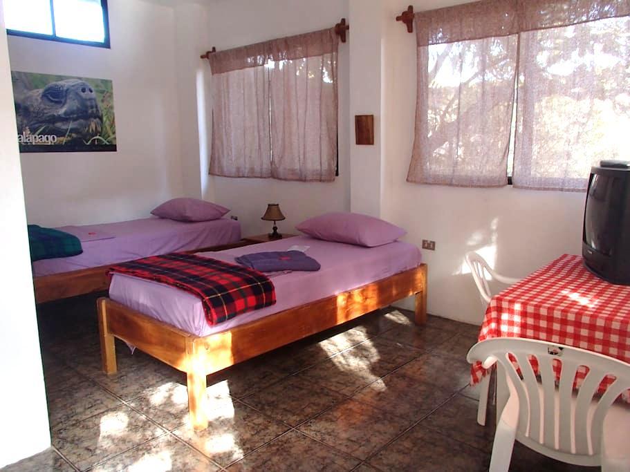Hostal Suiza,  twin room - San Cristobal
