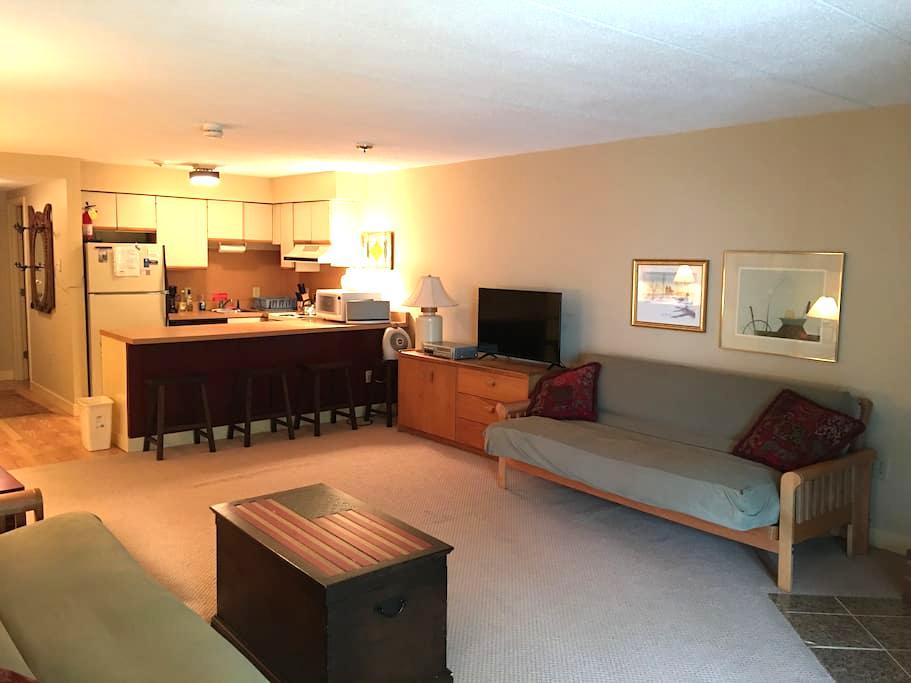 CONDO MT. SNOW, VT - Dover - Apto. en complejo residencial