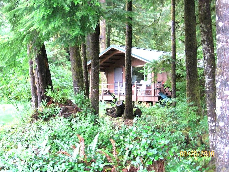 Cozy riverside/rain forest cabin - Forks - 小木屋