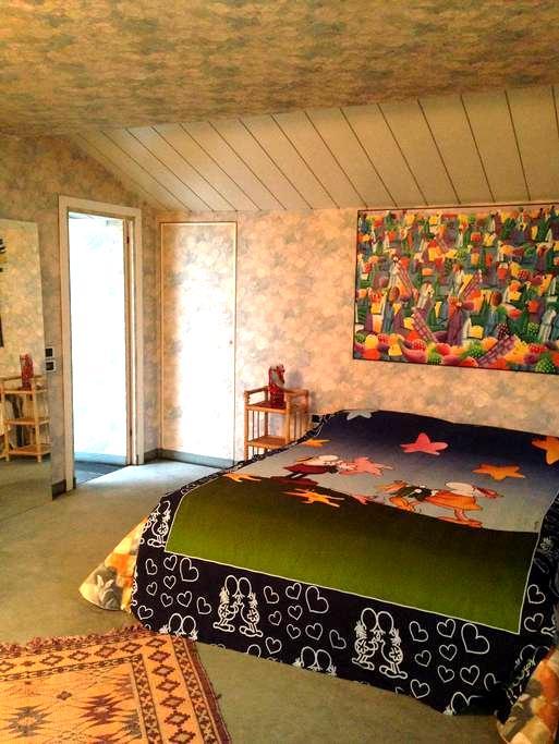Ampia, coloratissima matrimoniale - Malnate - Villa