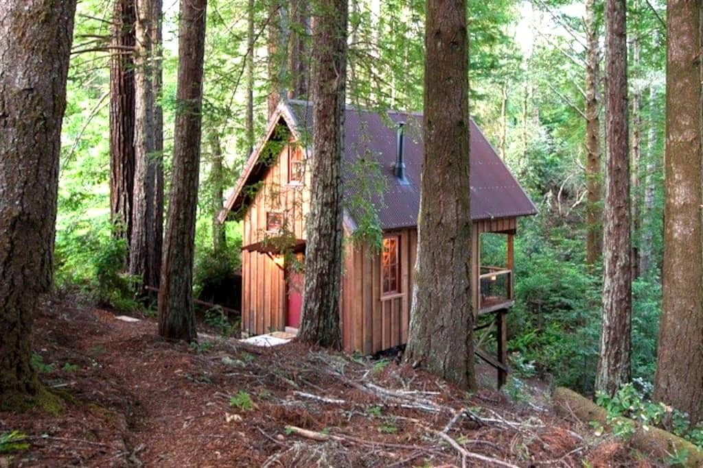 Handcrafted Hideaway Near Mendocino - Albion - Cabane