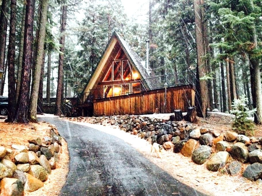 Cute Cabin in the Pines - Westwood - House