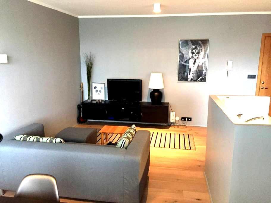 1 bedroom apartment near city centre - Reykjavík - Lejlighed