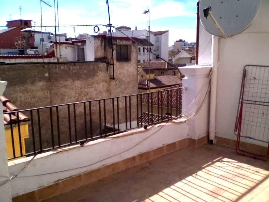 penthouse atico Granada center - Granada - Apartment