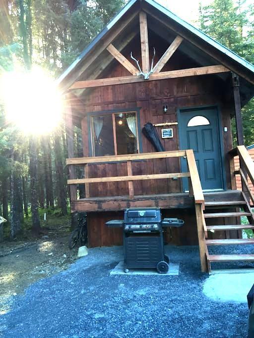 Cozy rustic cabin - Seward - Cabin