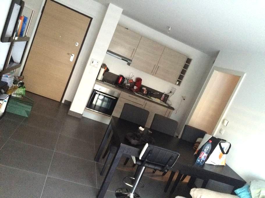 Agréable appartement T2 quartier de la Robertsau - Estrasburgo - Apartamento