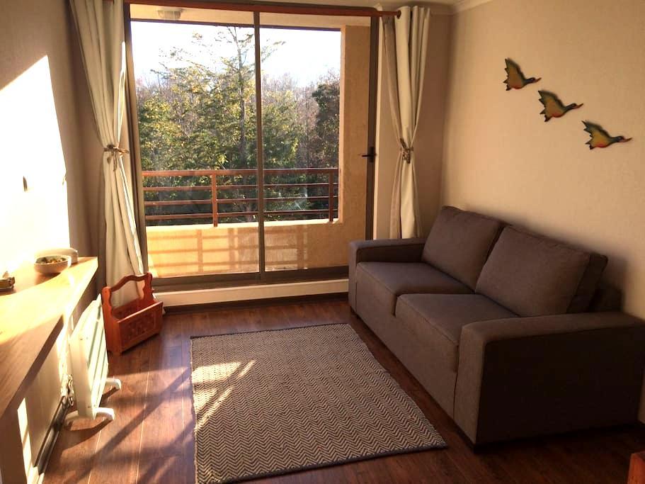 Departamento en Pucón - Pucón - Apartment