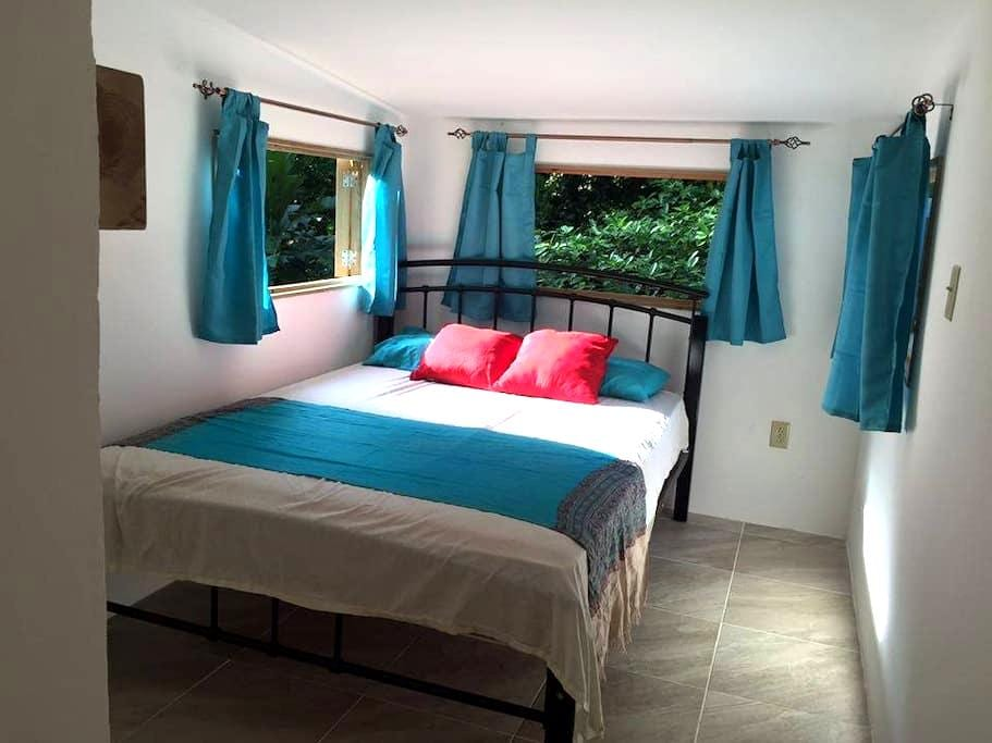 The Canopy Apartment - Red Frog Beach