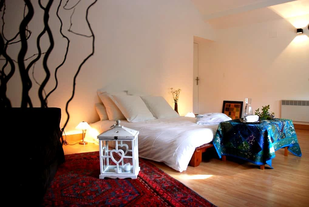 Le PRANA chambre AIR - Metz - Bed & Breakfast