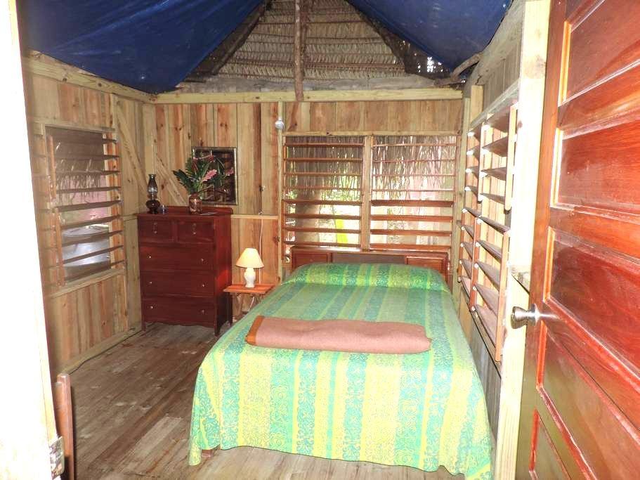 Garden thatched room - San Antonio - Cottage