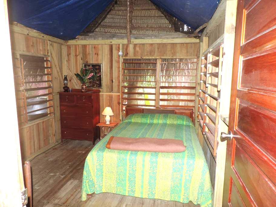 Garden thatched room - San Antonio - Mökki