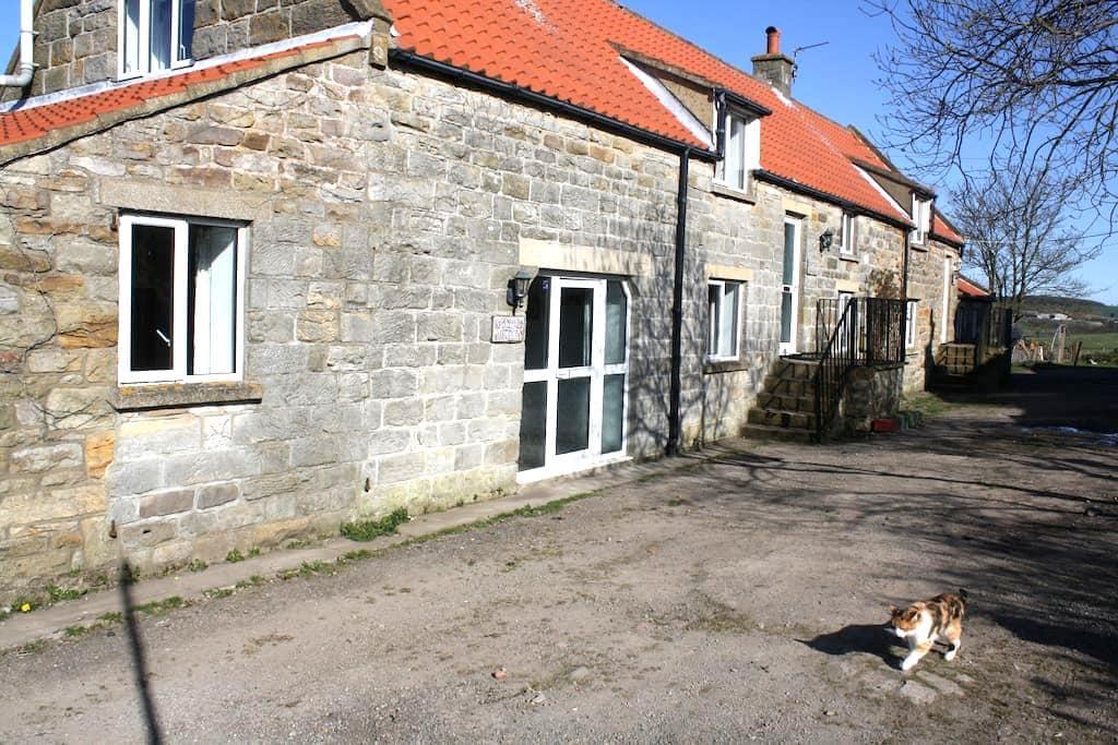 foxglove cottage - Lealholm - อพาร์ทเมนท์