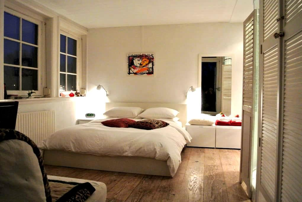 Spacious room with private bathroom - Amsterdam
