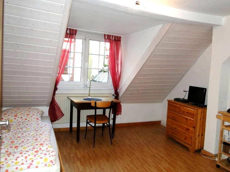 Single-Wohnung im Zentrum Freiburgs - Freiburg - Huoneisto