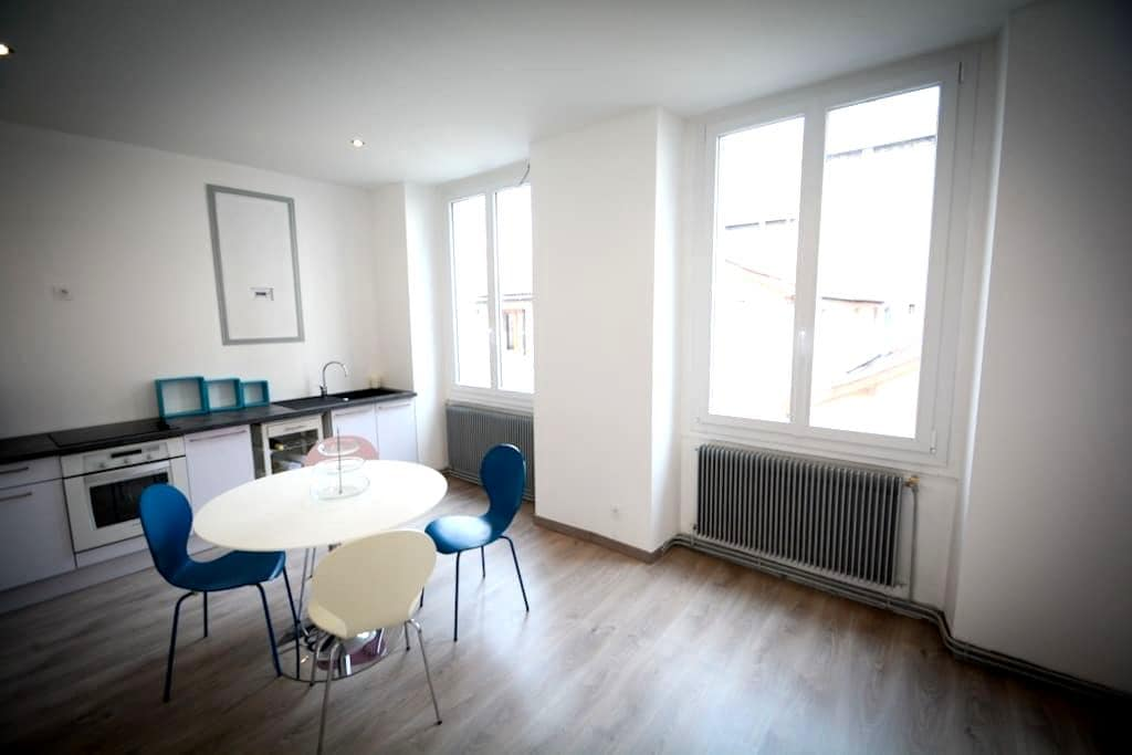 50m2 renovated near downtown,quiet - Saint-Étienne - Lejlighed