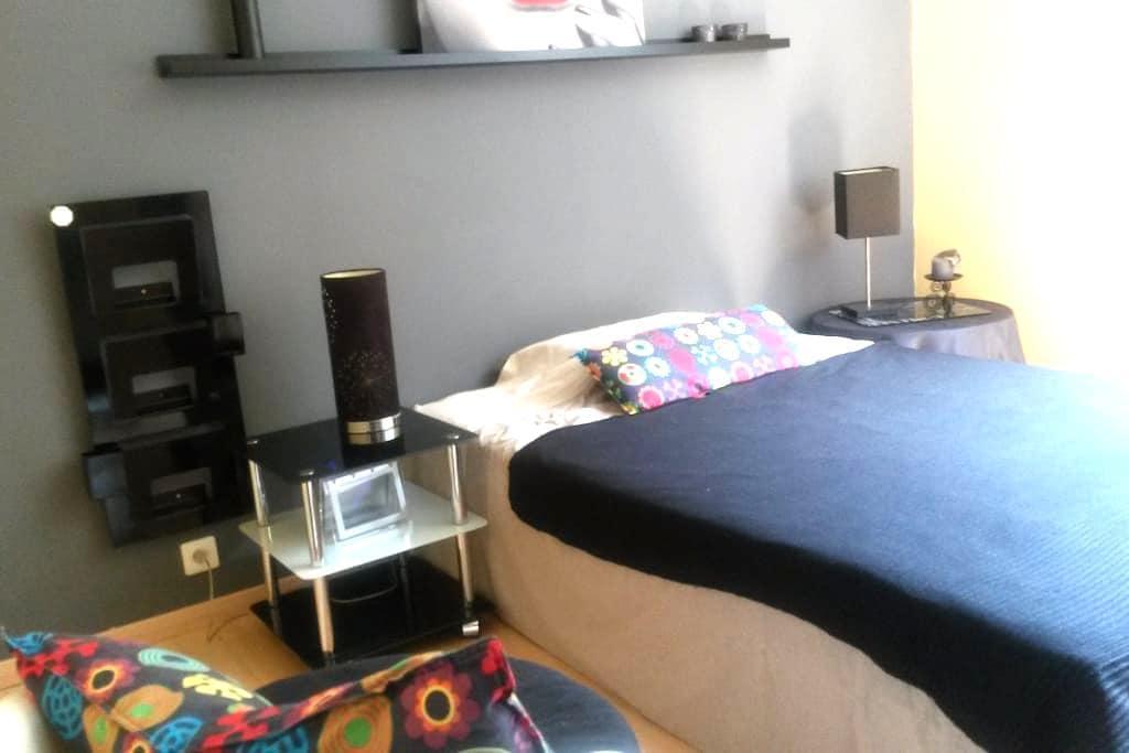 chambre double tout confort - Chambéry - Apartment