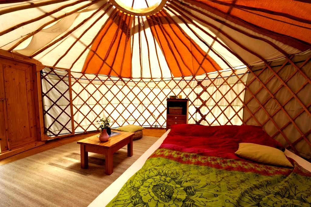 Natur pur - Übernachtung in gemütlicher Jurte - Wald-Michelbach - Yurt
