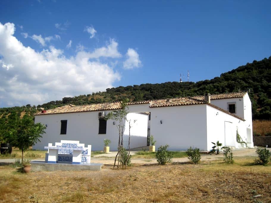 Molina de aceite Hacienda la Molina - Prado del Rey