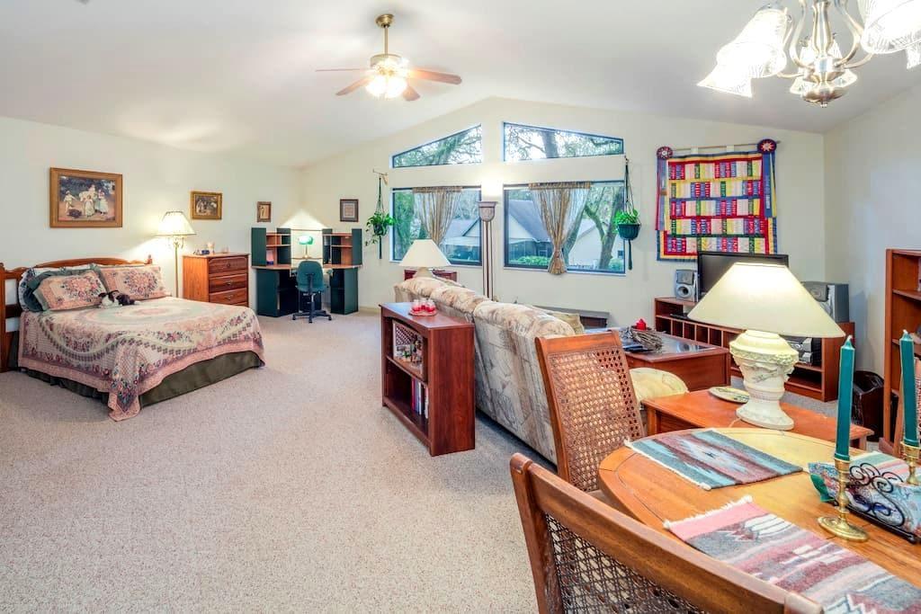 Bright, cheerful, large studio apt - Ocala - Apartment