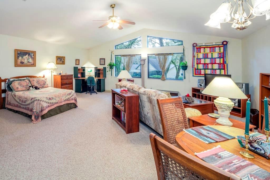 Bright, cheerful, large studio apt - Ocala - Apartament