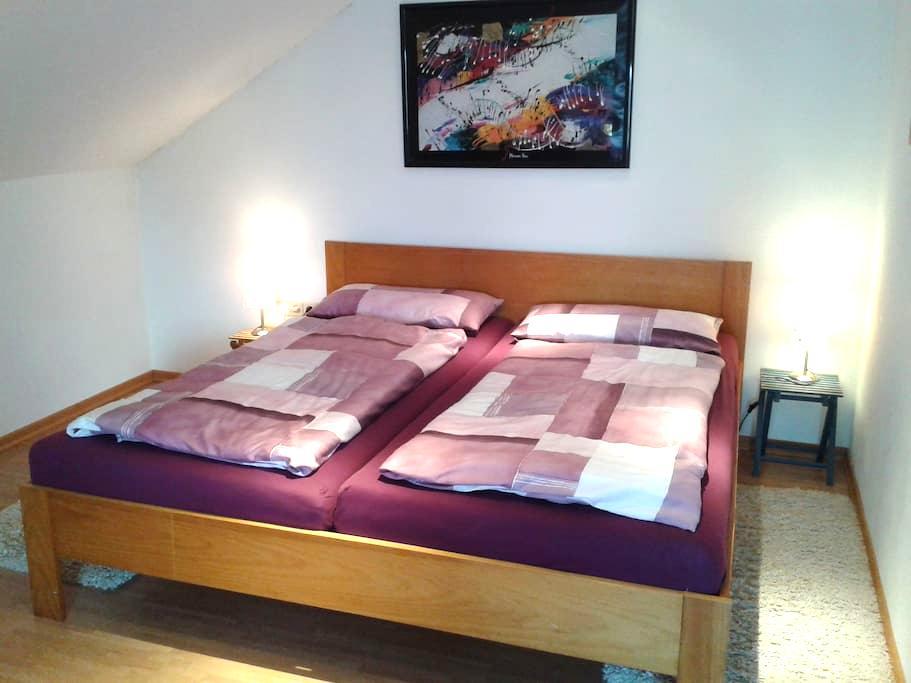 Großes Zimmer mit Dachterrasse - Würzburg - Дом