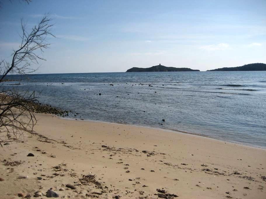 Bambou accès direct mer et plage du jardin - Zonza - Villa