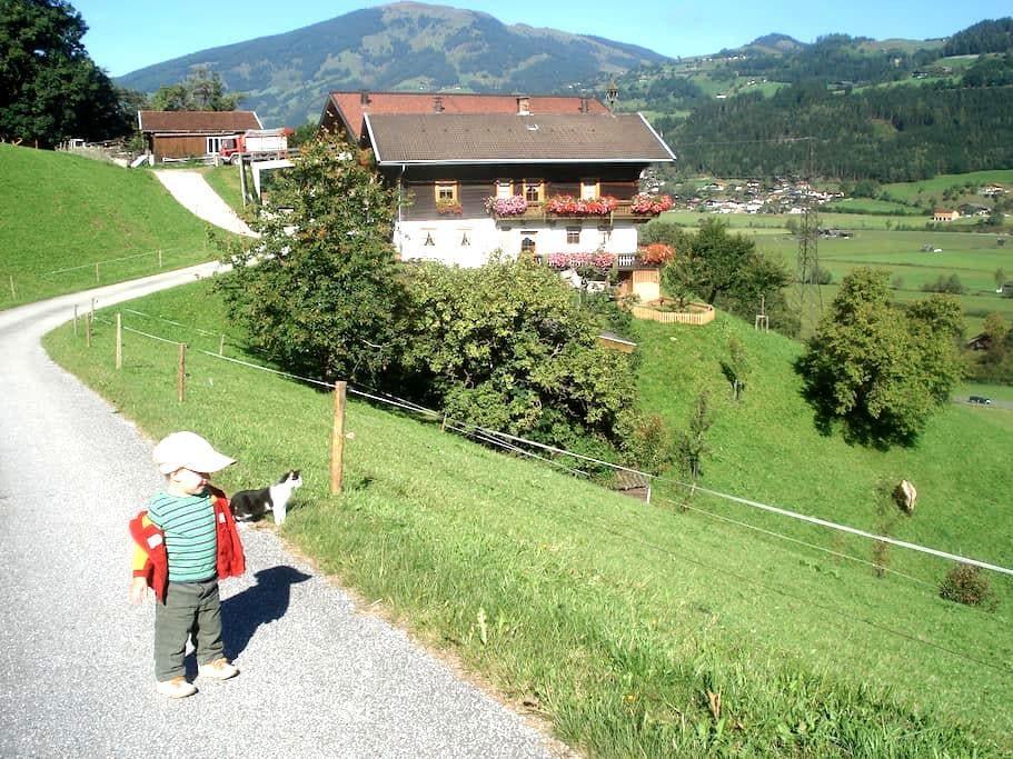 Urlaub am Bergbauernhof mit wunderschöner Aussicht - Mittersill - Wohnung