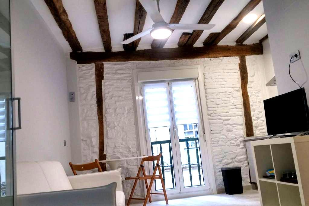 Nagusia II Coqueto estudio en Zumaia - Zumaia - Loft