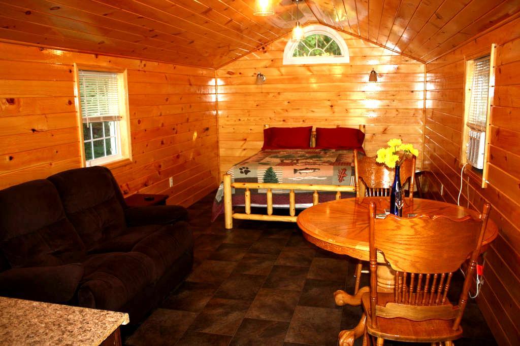 Keuka Lake Outlet Cabin - Penn Yan